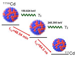 Cascada gamma-gamma de desintegración del Cd-111m