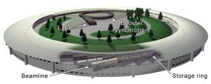 synchrotron