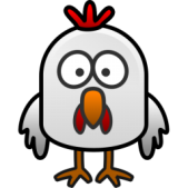 little-chicken