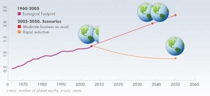 footprint-1960-2003-graph